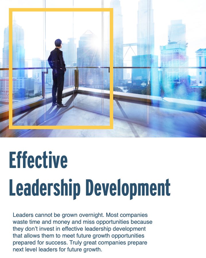 Effective Leadership Development Infographic Image
