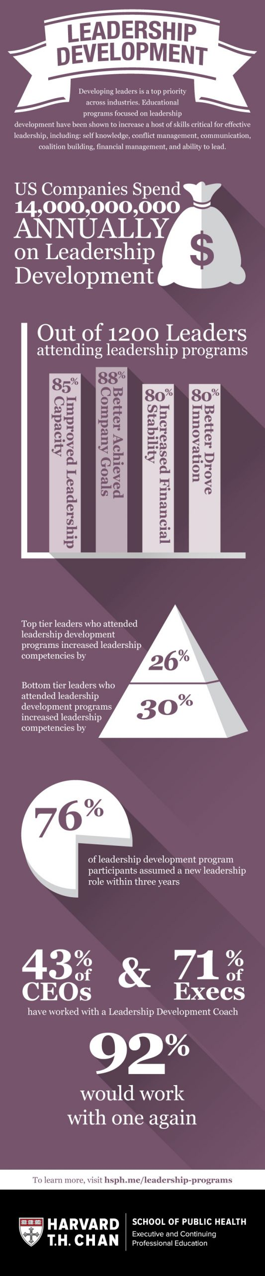 Leadership Development Infographic Image